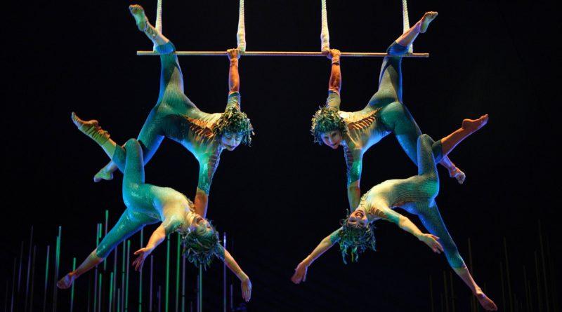 cirque-a bordo