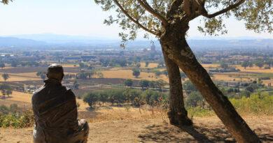Yoga y ecología : De un pájaro las dos alas